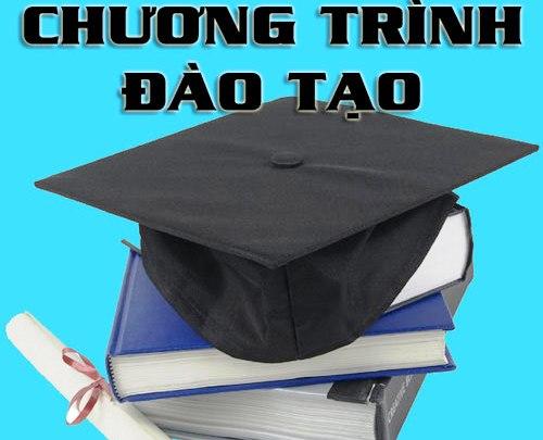 Chương trình đào tạo đại học ngành Quản trị kinh doanh